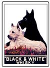 K�hlschrankmagnet - Black and White  Whisky