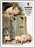 HARRIS PIGS FRIDGE MAGNET