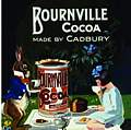 Single Coaster - Bourneville Cocoa