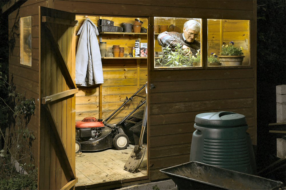 Shed Work